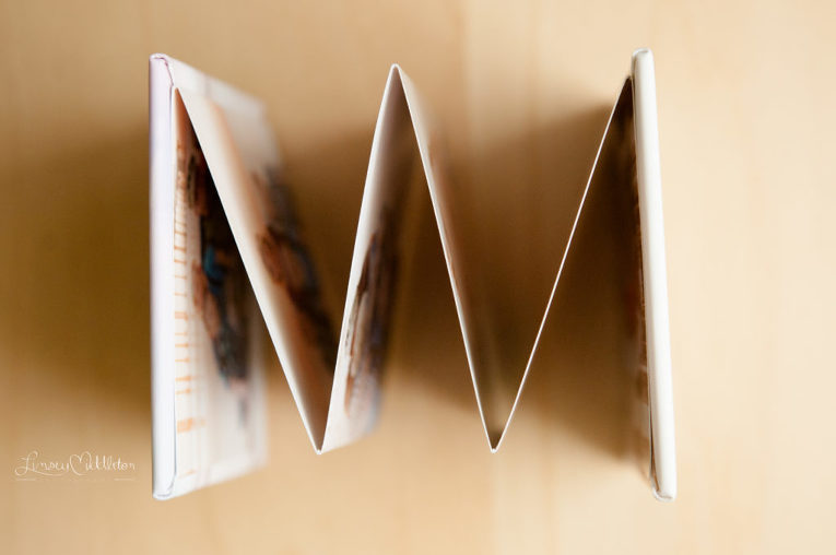 Mini Accordion Book | Linsey Middleton Photography